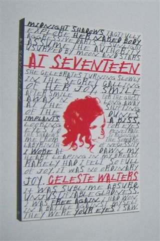 Image for AT SEVENTEEN
