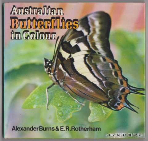 Image for AUSTRALIAN BUTTERFLIES IN COLOUR