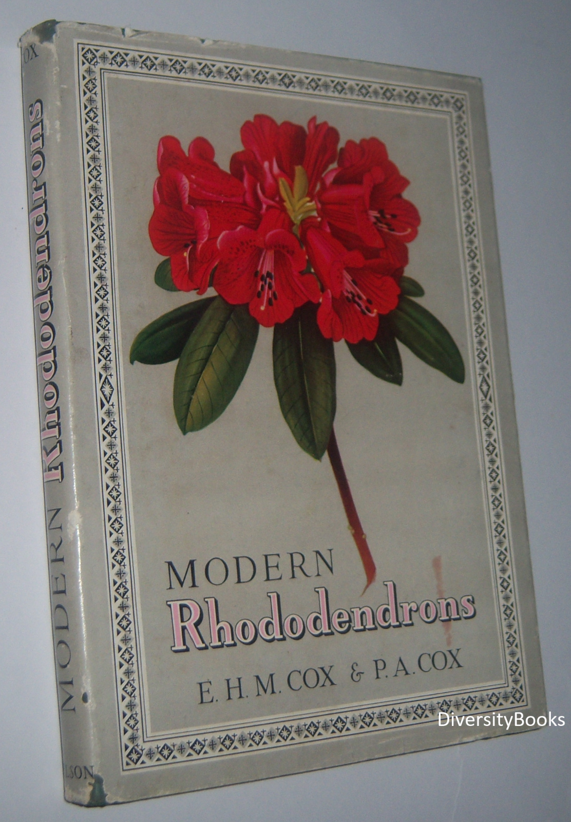 Image for MODERN RHODODENDRONS