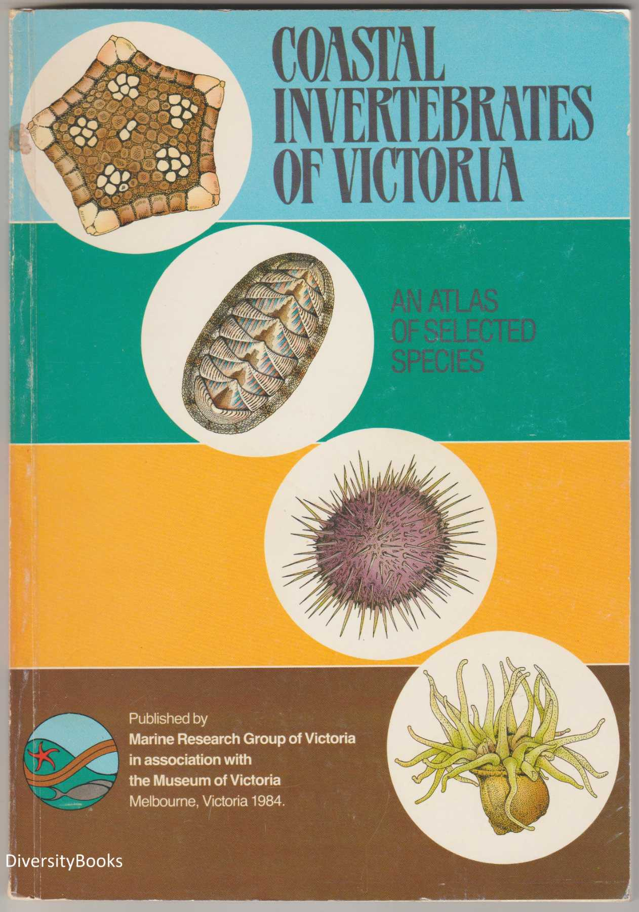 Image for COASTAL INVERTEBRATES OF VICTORIA: An Atlas of Selected Species