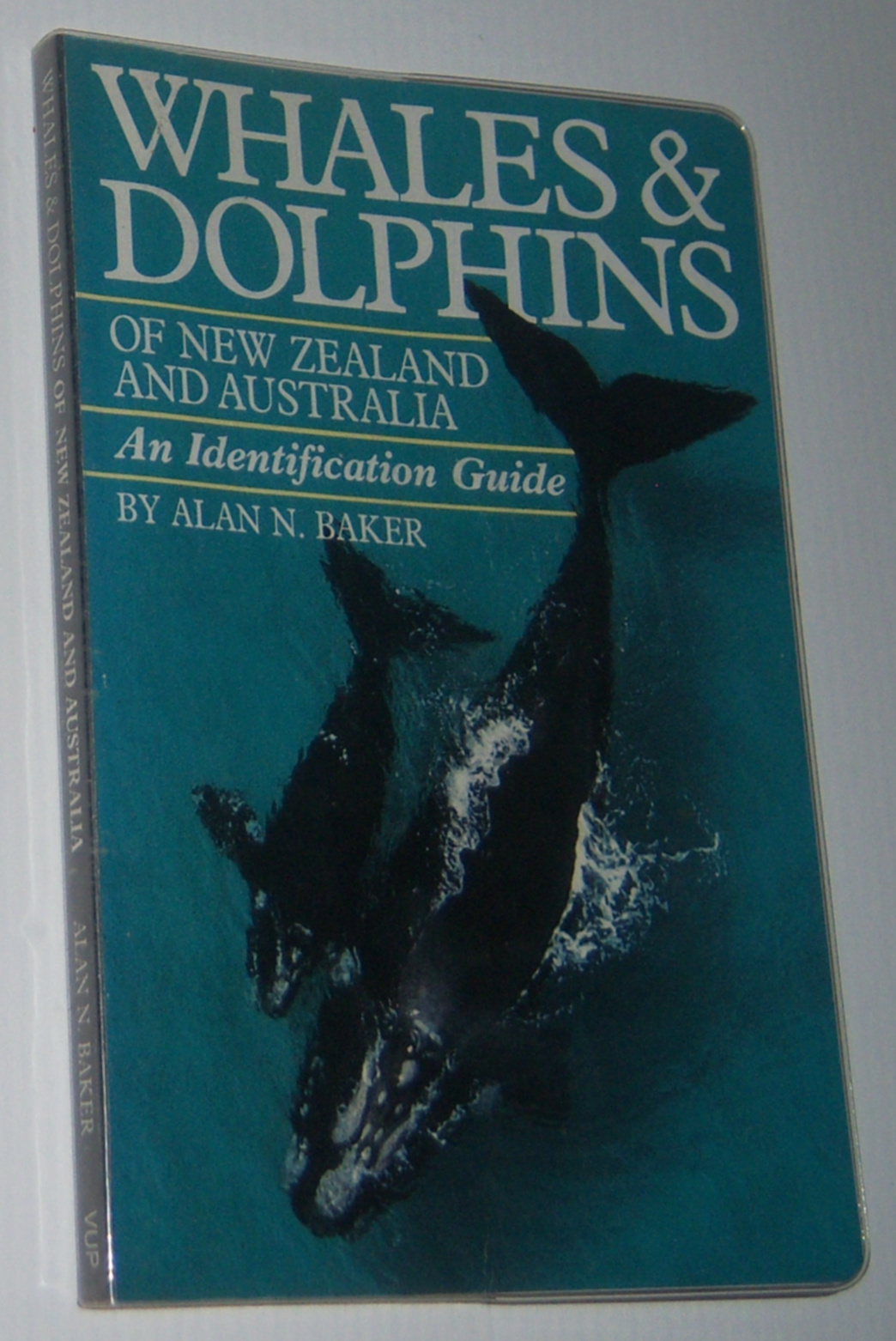 Image for WHALES AND DOLPHINS OF NEW ZEALAND AND AUSTRALIA: An Identification Guide