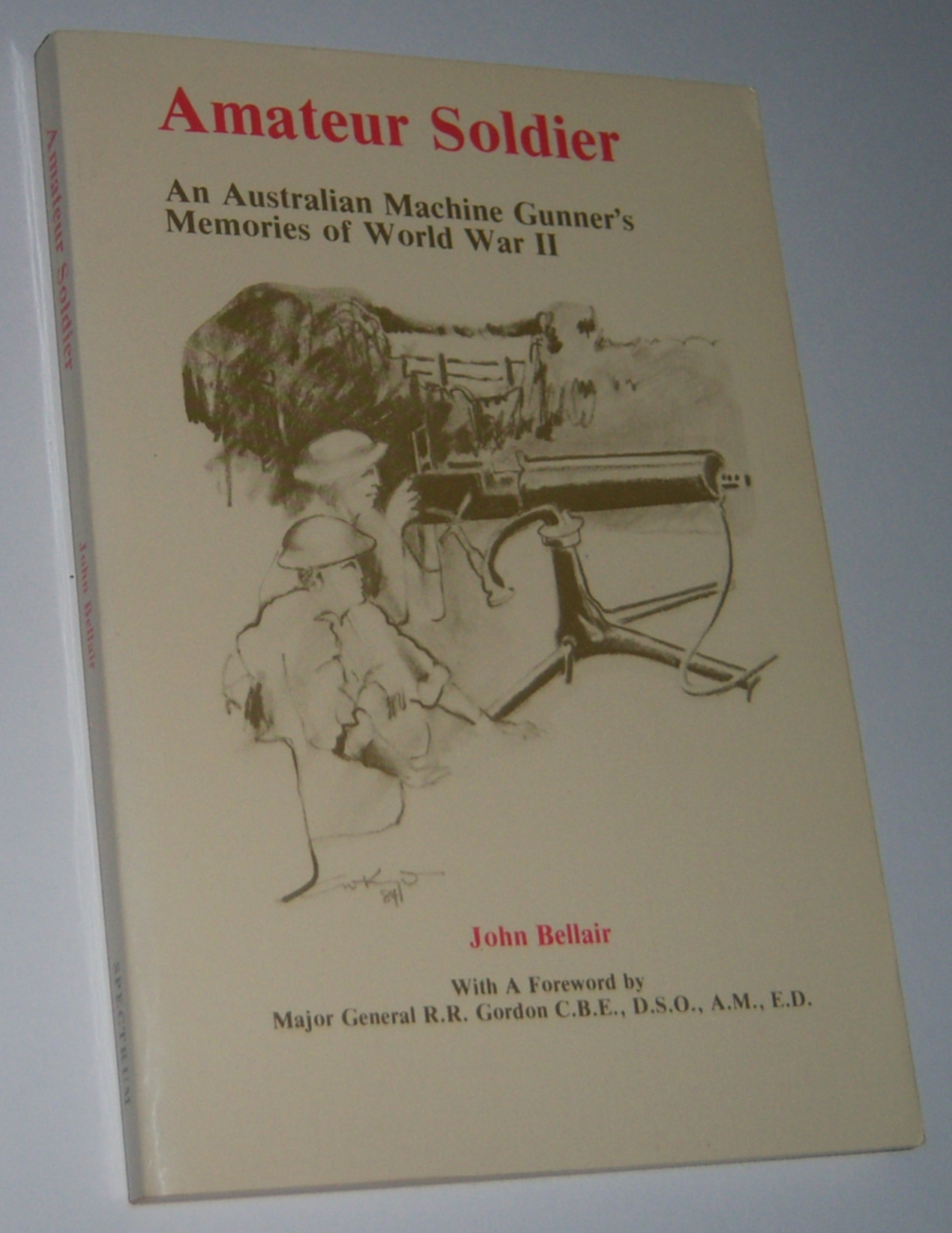 Image for AMATEUR SOLDIER : An Australian Machine Gunner`s Memories of World War II