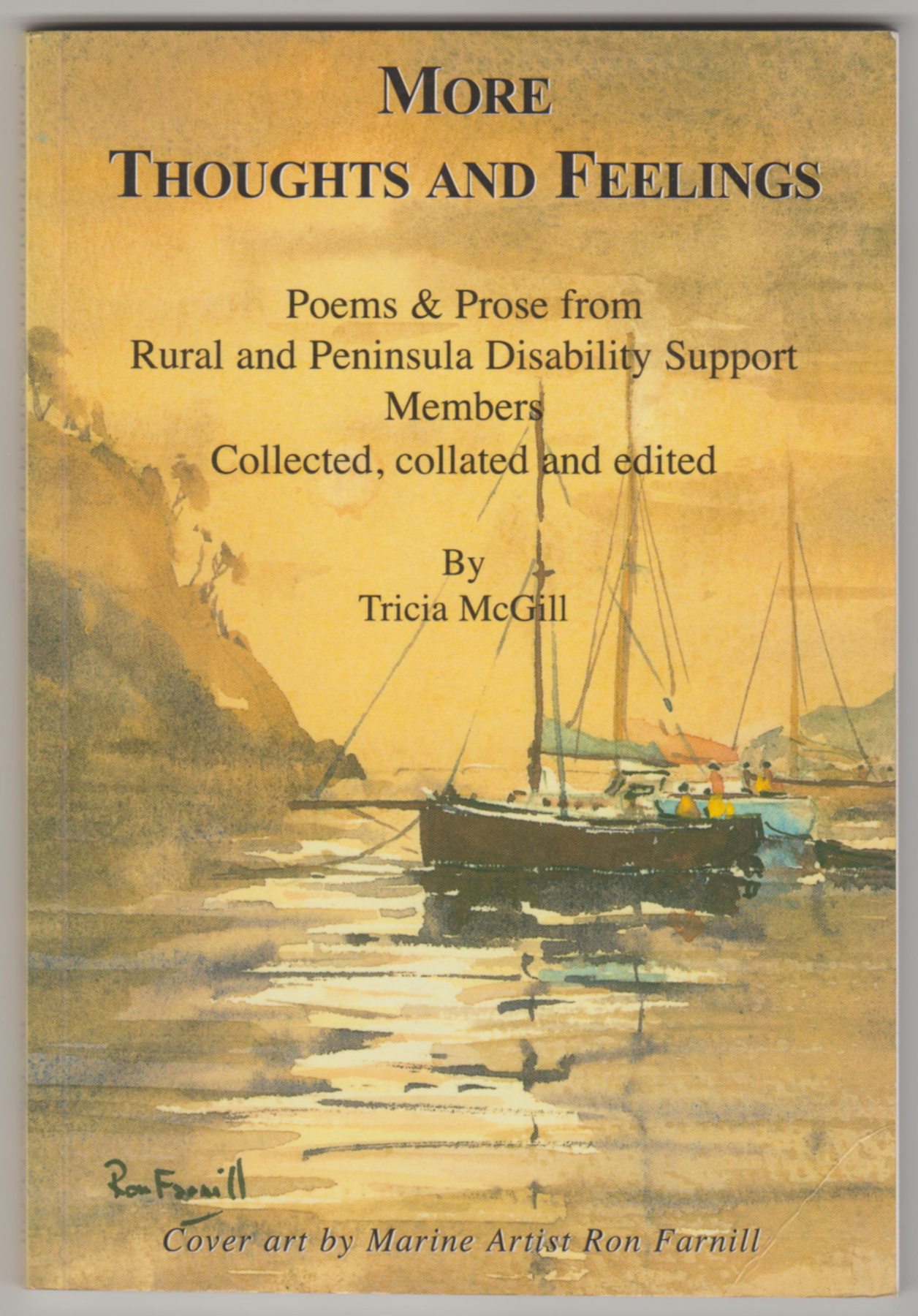 Image for MORE THOUGHTS AND FEELINGS: Poems and Prose from Rural and Peninsula Disability Support Members